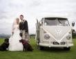 8-forms-of-wonderful-wedding-transport-5