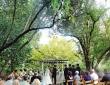 jennifer-jayson-real-wedding-22