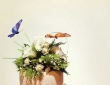 phototom.co_.uk-NM-wedding-1371abc