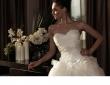 intuzuri-2013-dress-collection-13