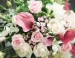 real-wedding-nicola-and-ryan-1