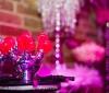 wedding-ideas-awards-2012-part-2-105