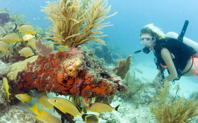 wedding-ideas-mag-florida-keys-competition-snorkelling-reef