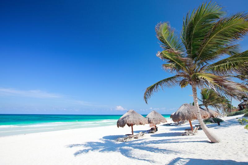 Safari and Beach Honeymoons in Africa
