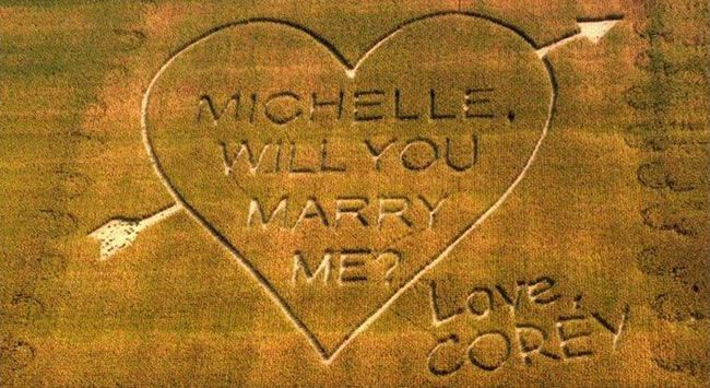 corny-wedding-proposal