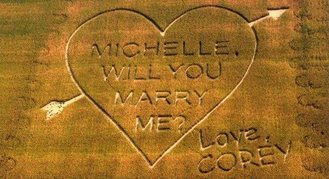 corny-wedding-proposal