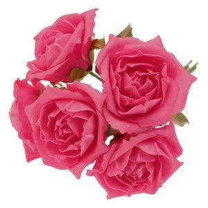 foam-roses