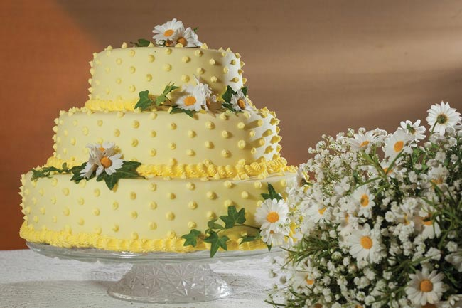 jessica-james-real-wedding-34