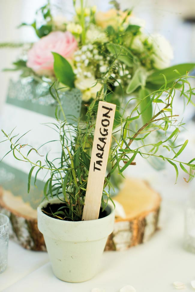 plant pot favours katherineashdown