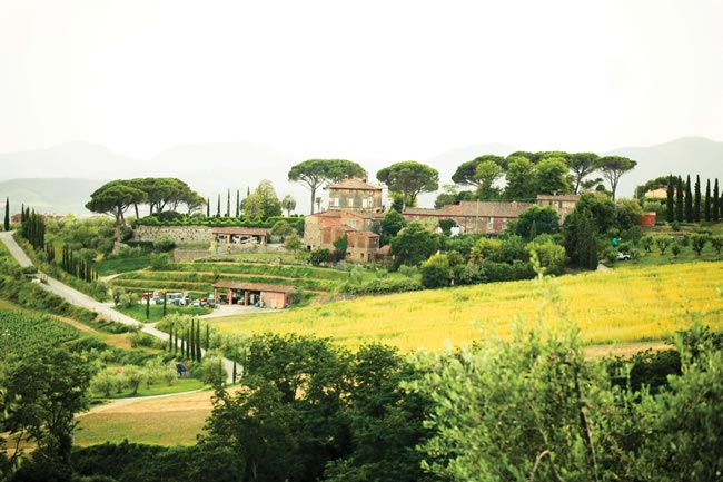 annette-gregs-chic-sunshine-filled-real-wedding-tuscany-hajley.com  IMG_7525