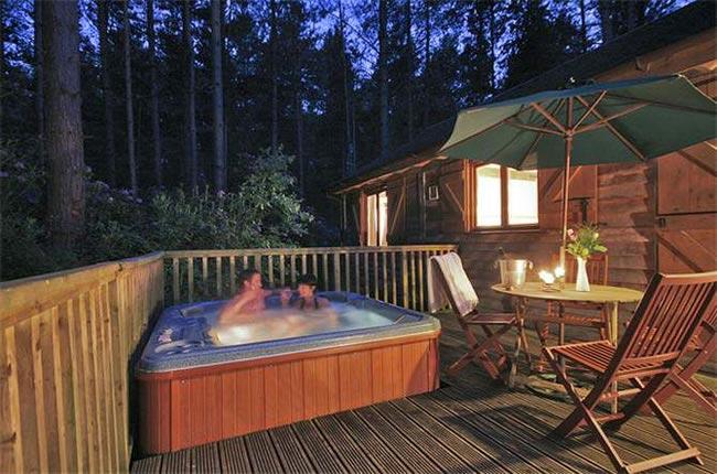 budget-honeymoons-500-griffon-forest