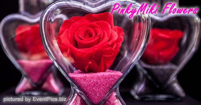pinki-miki-flowers