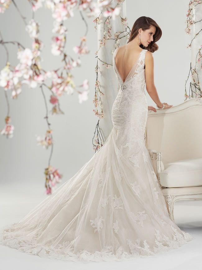 the-amazing-sophia-tolli-collection-for-spring-2014-is-full-of-sparkling-sexy-gowns-Y11400_Back_wedding_dress_2014