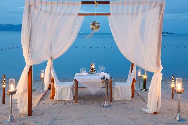 7-honeymoon-activities-your-guests-can-pay-for-dinner