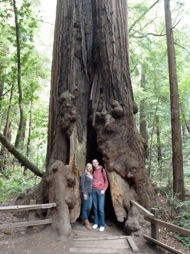 this-real-life-couple-had-an-amazing-californian-getaway-with-buy-our-honeymoon-SF17