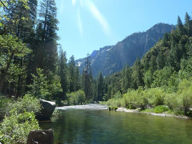 this-real-life-couple-had-an-amazing-californian-getaway-with-buy-our-honeymoon-Yosemite-9