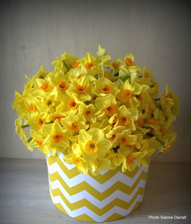 Cheap Wedding Flowers: Ways To Save On Your Wedding Flowers narcissi