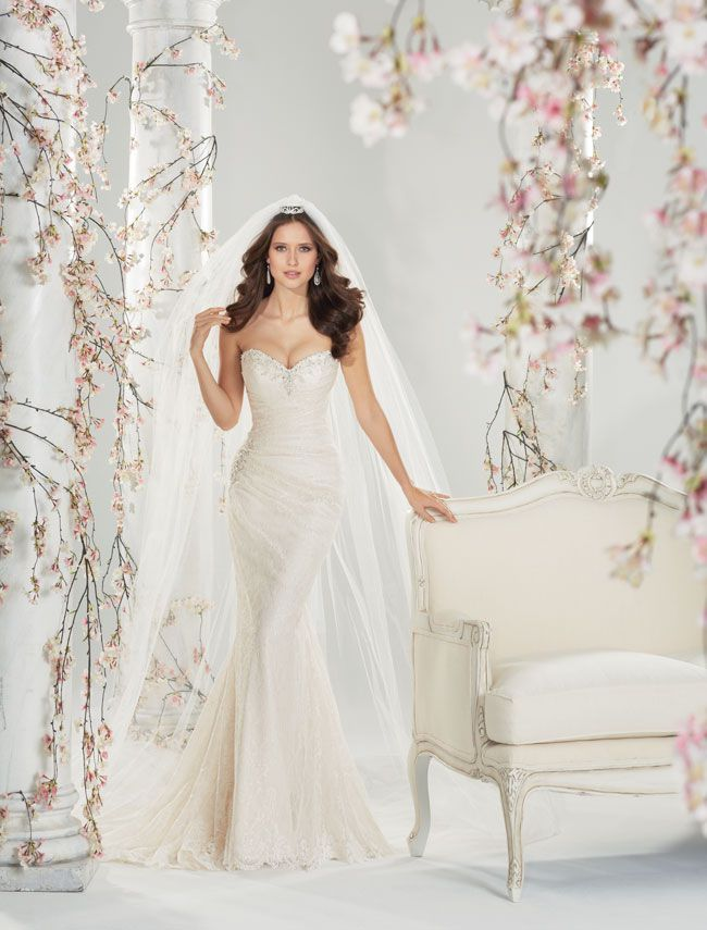 7-picture-perfect-wedding-dresses-from-sophia-tolli-Y11415_Day03_11_568