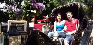 love-in-the-big-apple-a-real-life-honeymoon-in-new-york-Carriage-ride