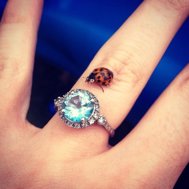 show-us-yoursparkles-and-win-your-wedding-ring-Lucky-In-Love-@HisMrsToBe96
