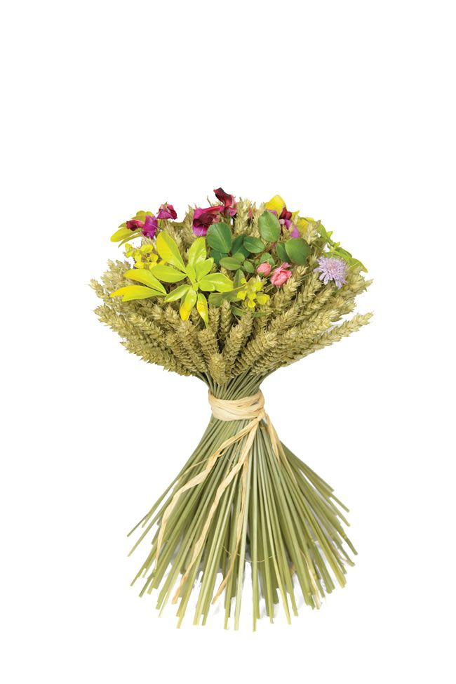 ShropshirePetals.com Medium Wheat  Sheaf £9.95 with fresh flowers
