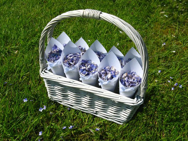 know-your-petals-a-brides-quick-guide-to-real-flower-confetti-Delphinium-Petals