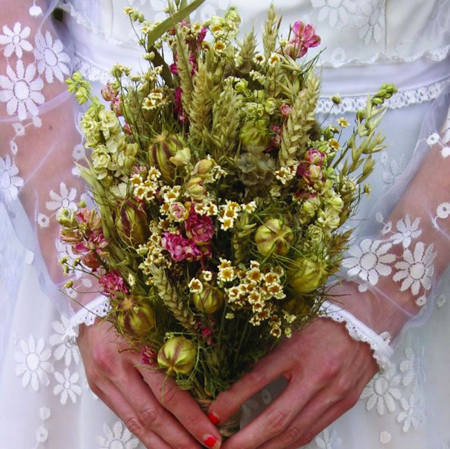 october-offers-rustic country bride noths