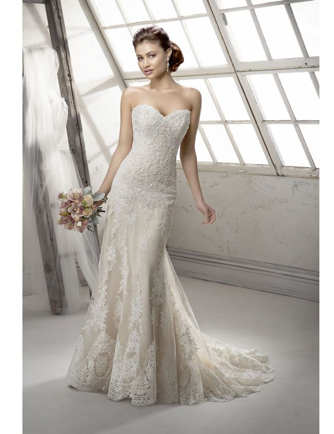 Sottero and Midgley 2014 Collection, Viera