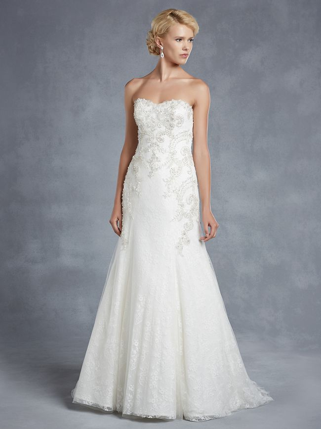 blue-collection-enzoani-Hawthorne