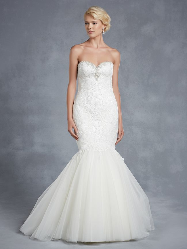 blue-collection-enzoani-Hollybrook