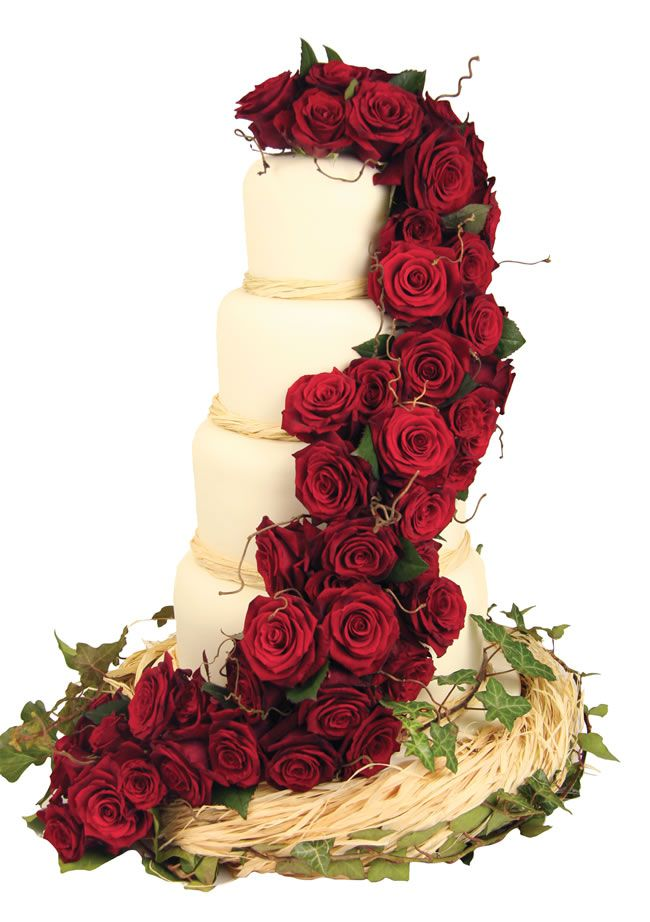 festive-fancies-couture-cakes.co.uk Red Cascading Rose Cake £556