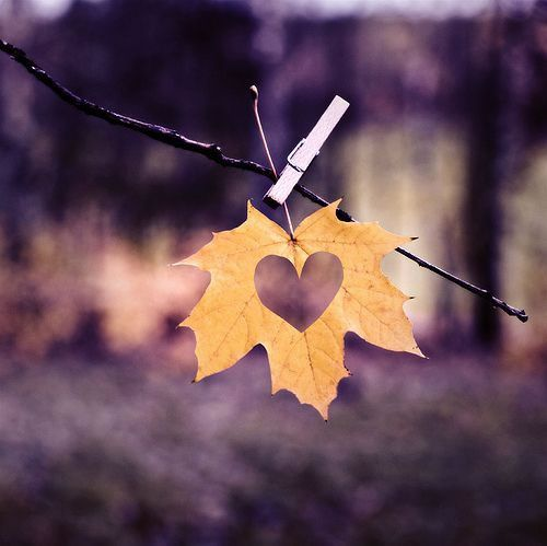 autumn-wedding-pinterest- Found on inspiring-pictures.com