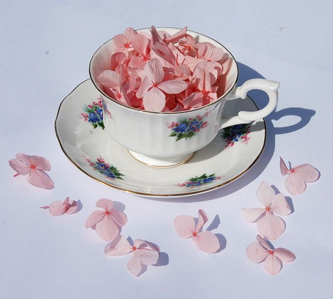 share-your-real-flower-petal-confetti-moment-and-win-cup