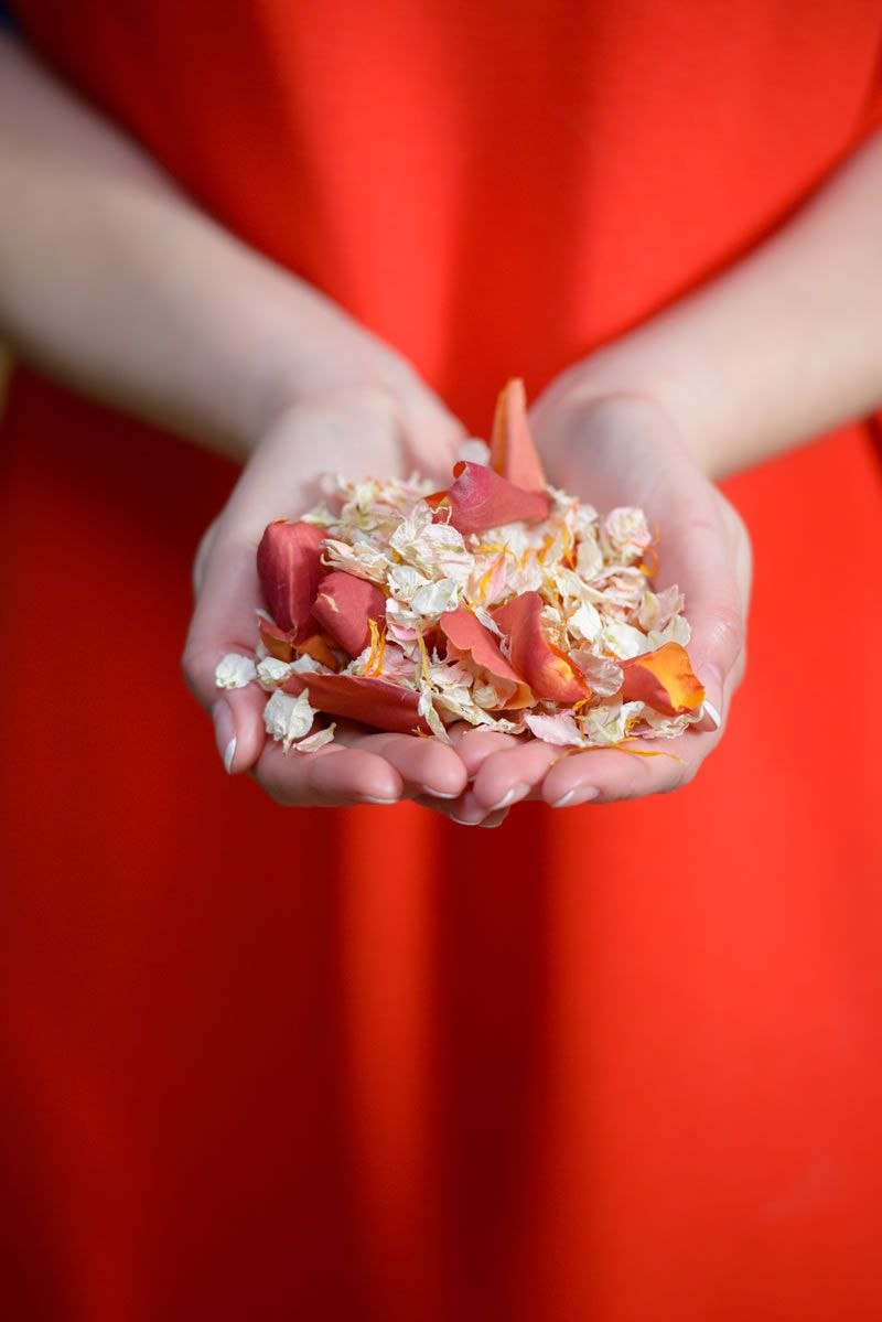 cool-confetti-ideas-shropshire-petals-ShropshirePetals.com Coral Reef £13.50 per litre