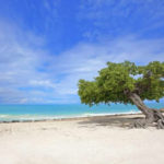 Best Destinations For Beach Weddings 2015-aruba