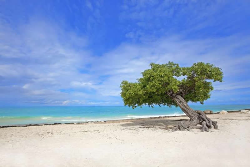 Best Destinations For Beach Weddings 2015-aruba