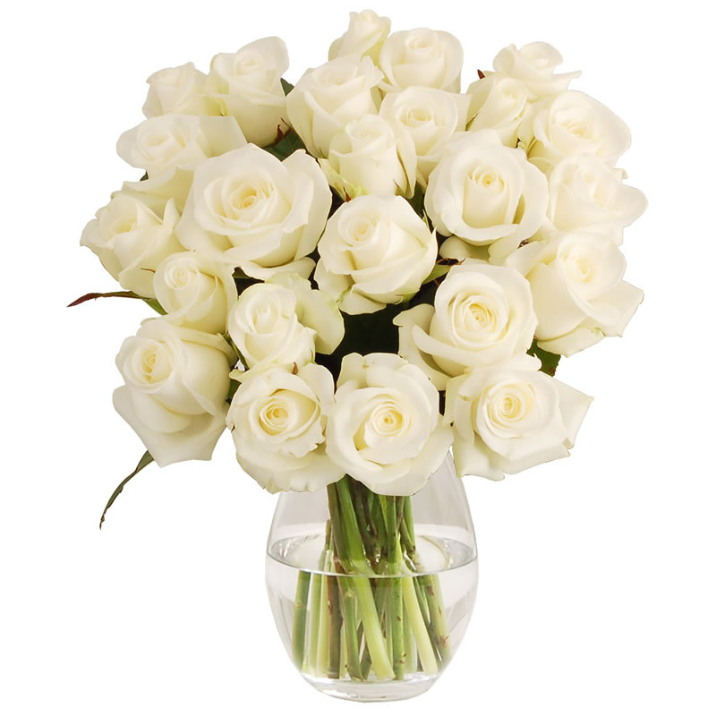 ethical-wedding-fairtrade-white-fairtrade-roses