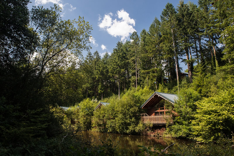 Deerpark, Forest Holidays cabins (1)