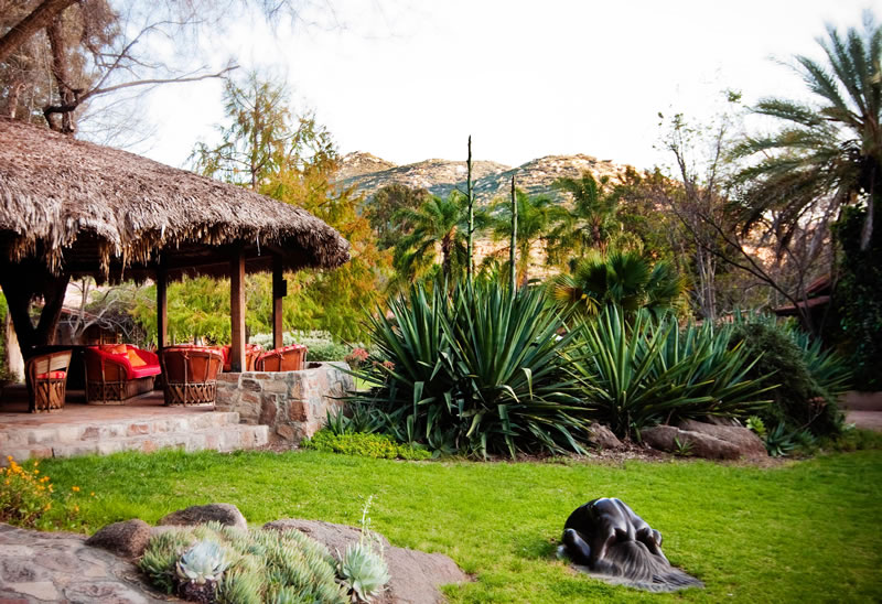 active-honeymoon-Rancho-La-Puerta-GArden