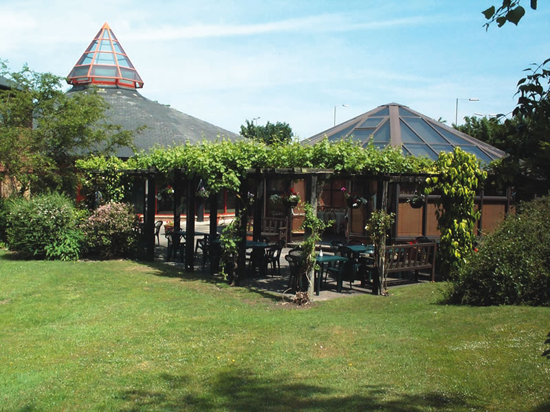 mad-hatters-tea-party-DCP_0517 abingdon terrace