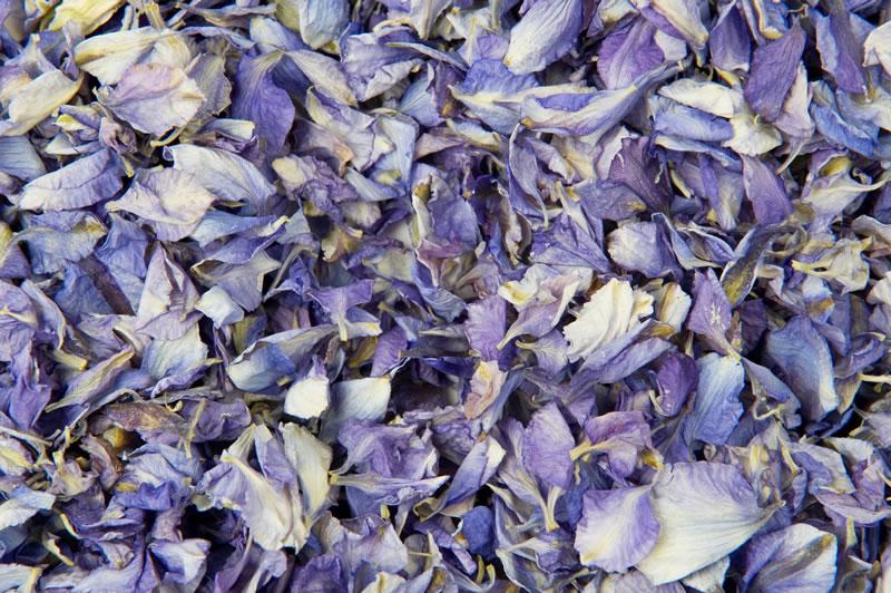 ShropshirePetals.com Frosted Blue Petals £11.50 per litre (2)