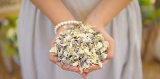 ShropshirePetals.com Handful of Winters Morn £11.50 per litre