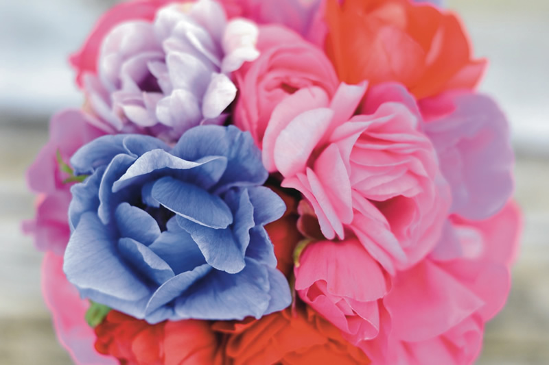 flowers-for-all-seasons-04 April - Handtied Bouquet - Anenome with Ranunculus