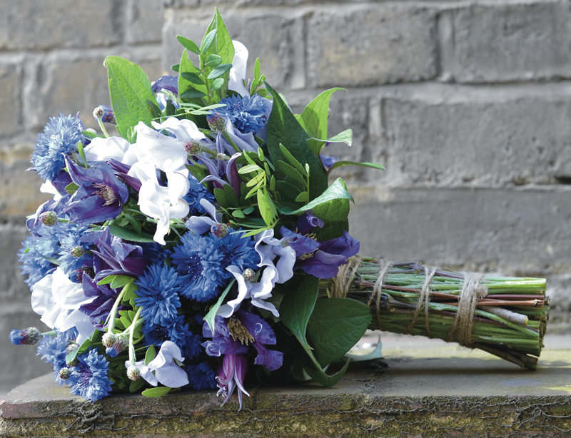 flowers-for-all-seasons-05 May - Handtied Bouquet - Cornflowers with Sweet Peas, Clematis and Pistachio Foliage