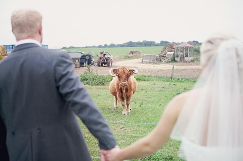 jimmys-farm-wedding-LJ (240)