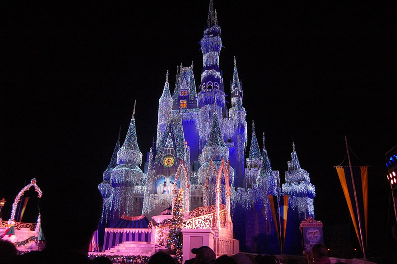 buy-our-honeymoon-magic-kingdom