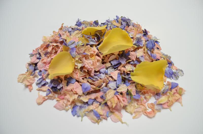 ShropshirePetals.com Candyfloss, Frosted Blue, Golden Slumber £13.95 per litre