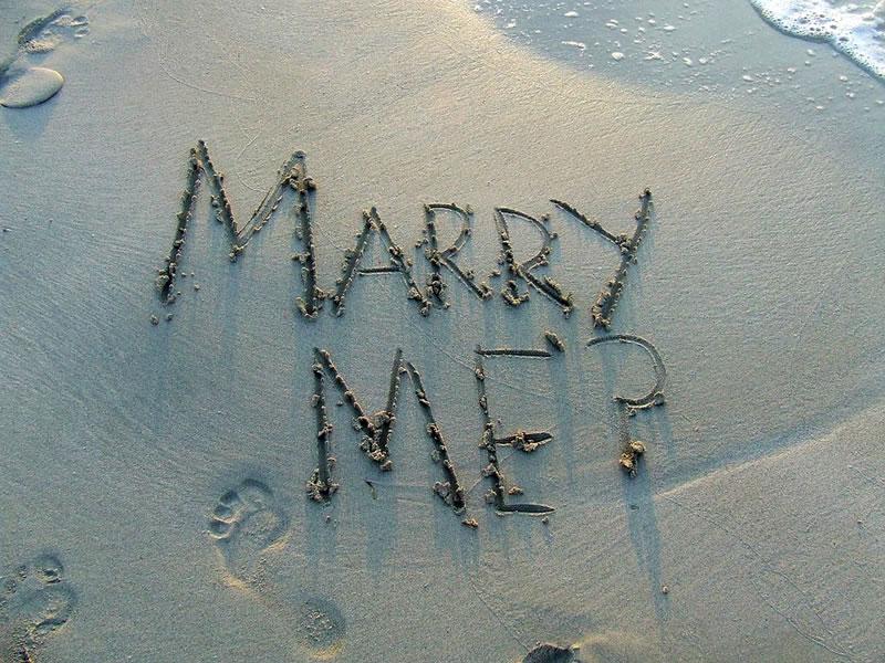 holiday proposal4