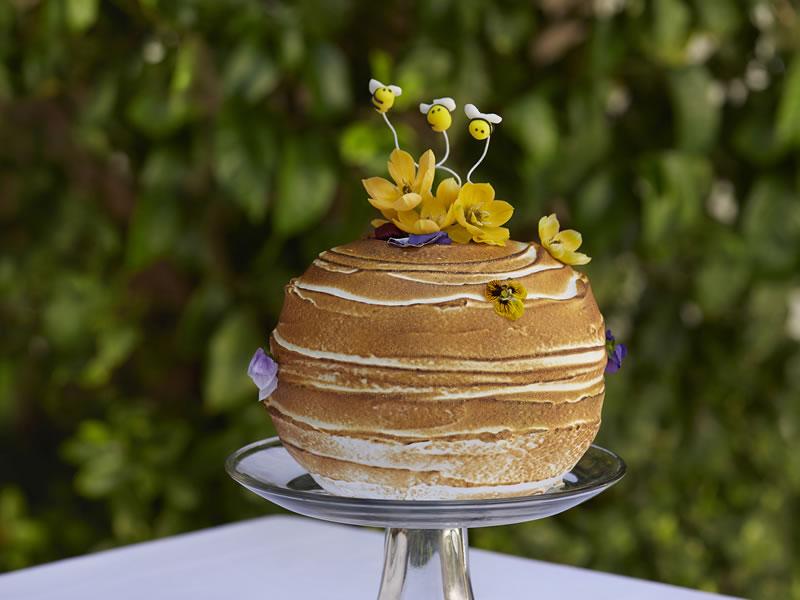 Bel-air cakes1