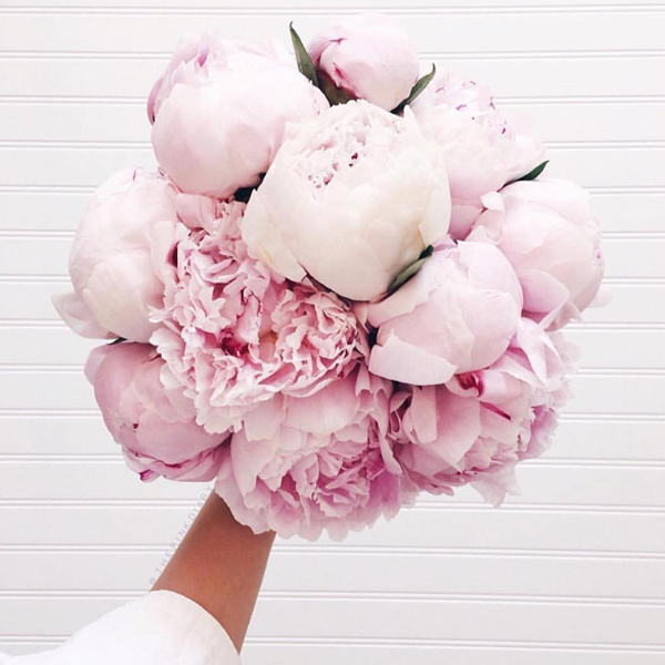 flower-trends-peonies